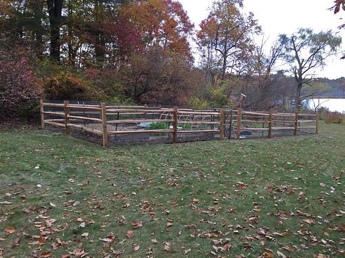 new garden fence IMG_3693