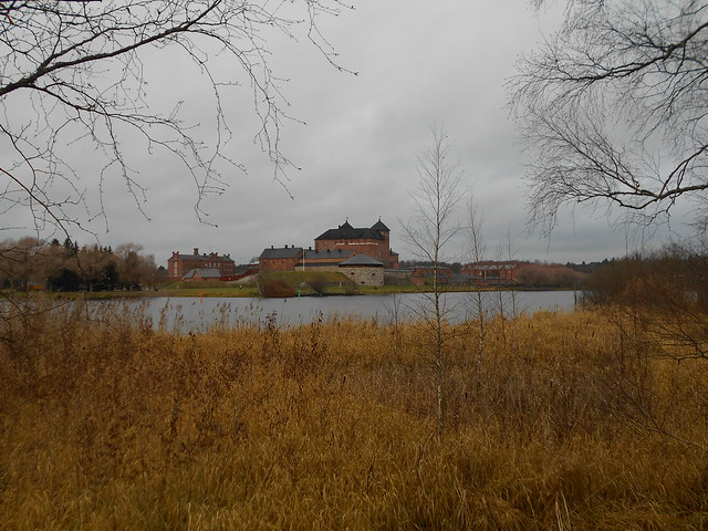 Ruskainen kaislikkonäkymä Hämeen linnalle, 7.11.2015 Hämeenlinna Varinkonniemi