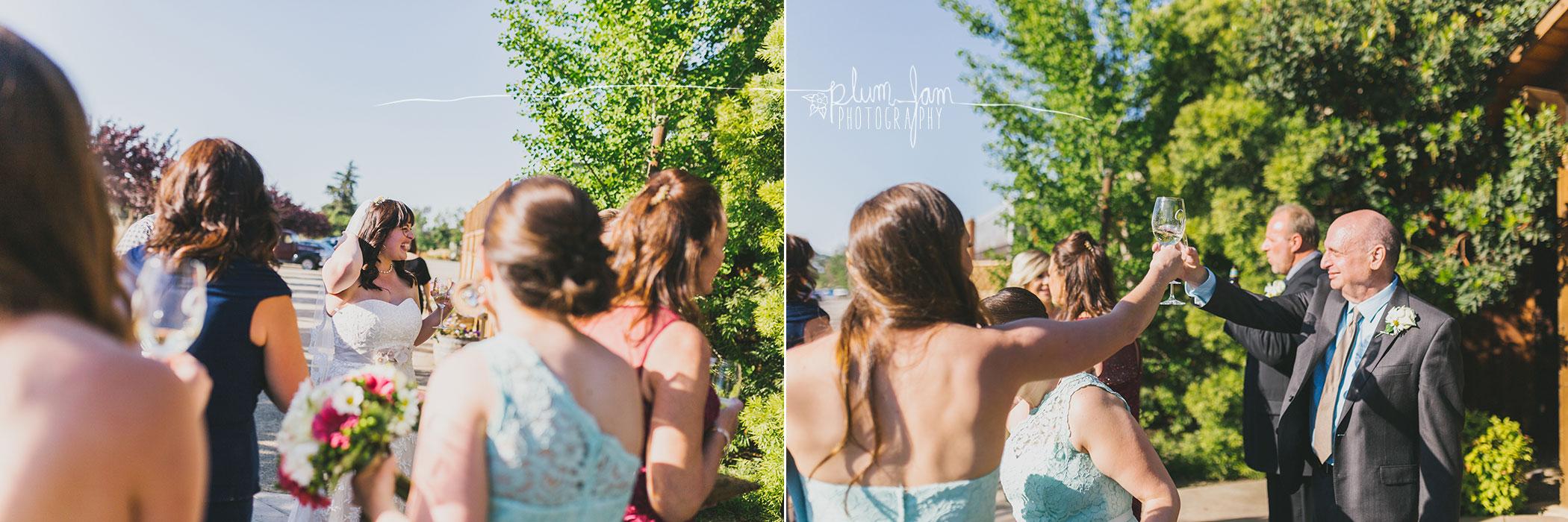 ElizabethCameronWedding-15-PlumJamPhotography