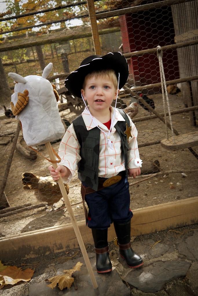 Woody Solo Costume