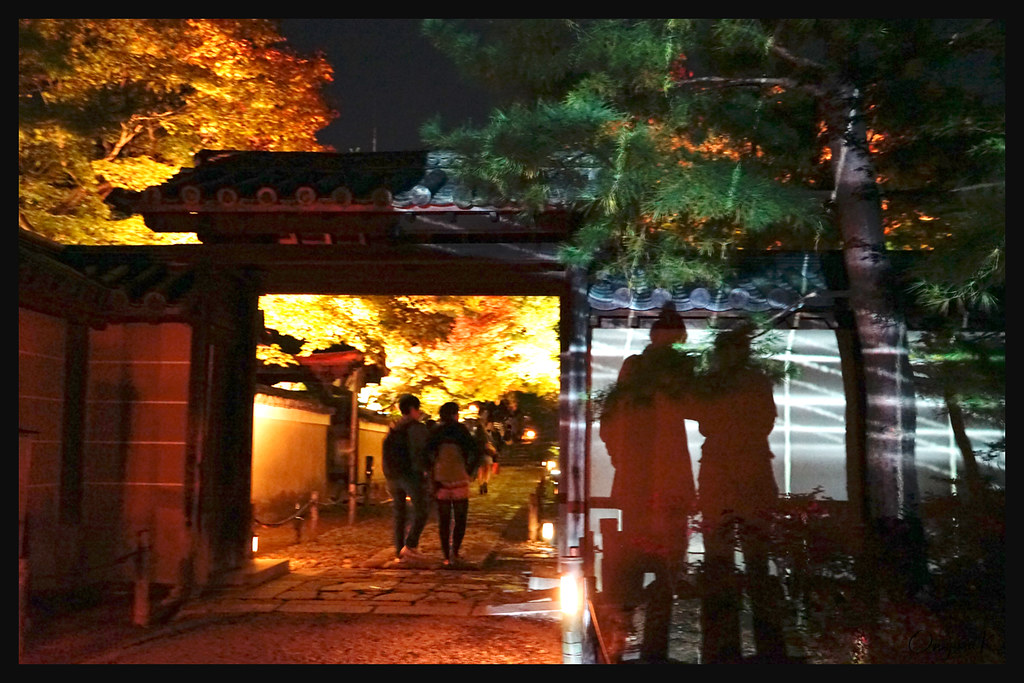 日本京都_高台寺 夜燈.23