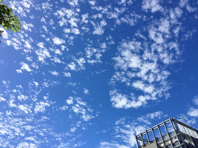Friday的高積雲