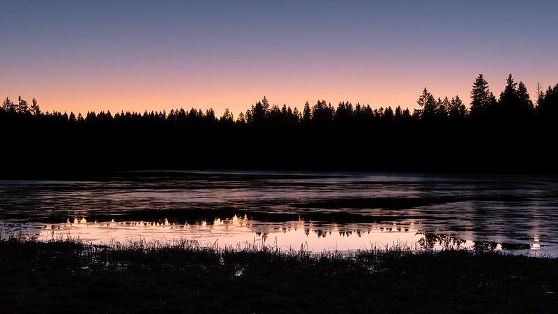 Frozen lake - Etang de la Gruère