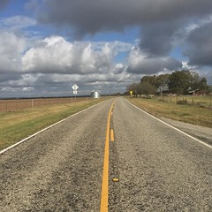 Part 9 of my #roadtrip to Lost Maples State Natural Area. Standing in the middle of the road in God's country. #roadtrippin #ruraltexas #texashillcountry #roadtoperfection