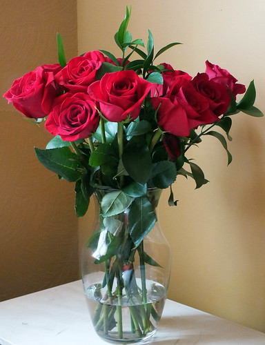 Roses from my lover