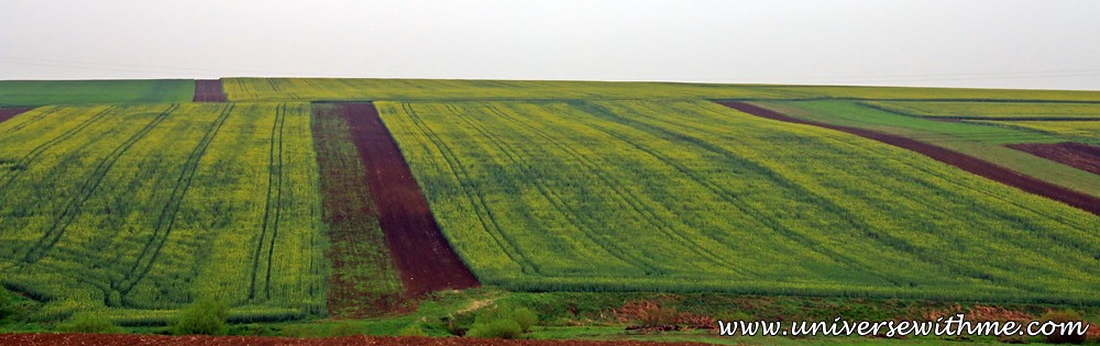 Romania016