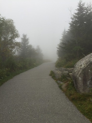Clingman's Dome hike 9