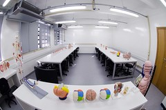 Laboratório de Anatomia - Rafael Casagrande-9751