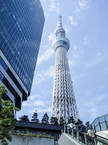 東京スカイツリー写真画像