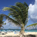 Orient Bay Beach, St. Martin. Where I brushed up my tanning skills today. Also revisited other life skills such as swimming, frolicking, exhaling, relaxing. Even for a professional vacationer, I could feel a bit of the coming down sensation I begin to e
