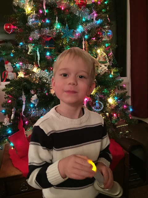 Elmer in front of the tree, Christmas 2015