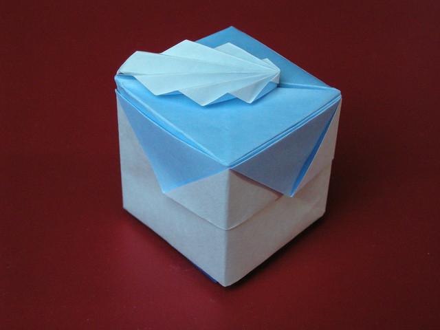 Petit cake-shaped box by, Nikon COOLPIX P5000
