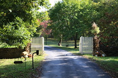 Security Gate on Driveway, Ayrshire Farm, Upperville, VA
