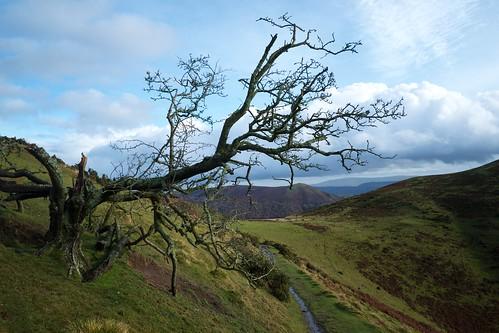 Shropshire winter 1