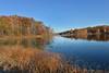 Autumn at Punderson