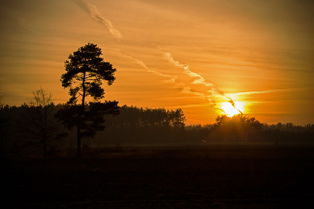 Autumn sunset, Canon EOS 700D, Canon EF-S 18-200mm f/3.5-5.6 IS