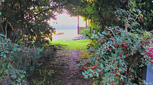 Beer garden at Kuhlsoer Mill IITM_SY__20150830_184108