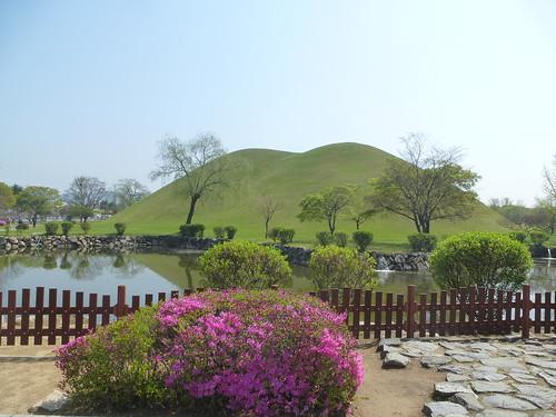 Co-Gyeongju-Parc des Tumuli (1)