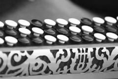 noires et blanches - Photo of Gorenflos