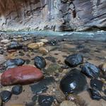 Rocks, Narrows trail, Zion