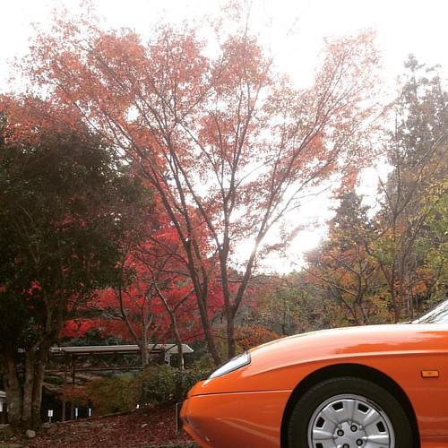 紅葉ちょっとだけ見れた。 #紅葉 #バルケッタ #フィアット #FIAT