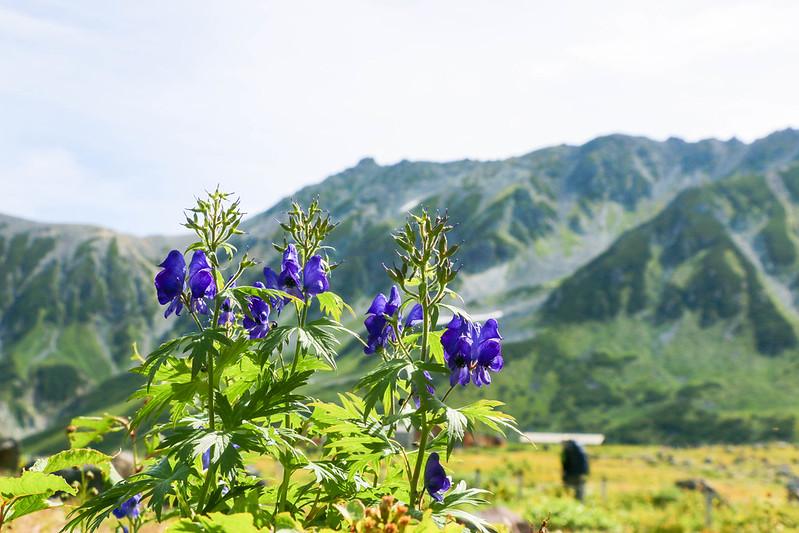 2014-09-06_00281_立山剱岳.jpg