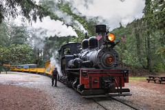Roaring Camp Railroads - Felton