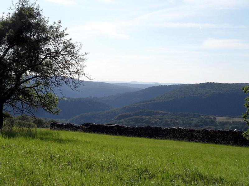 Lahntal bei Frücht, Blick Richtung Lahnstein
