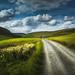 A Pennine Walk by kris greenwell