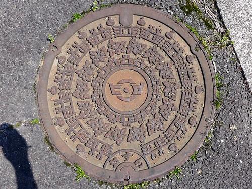 Hiromi Ehime, manhole cover (愛媛県広見町のマンホール)