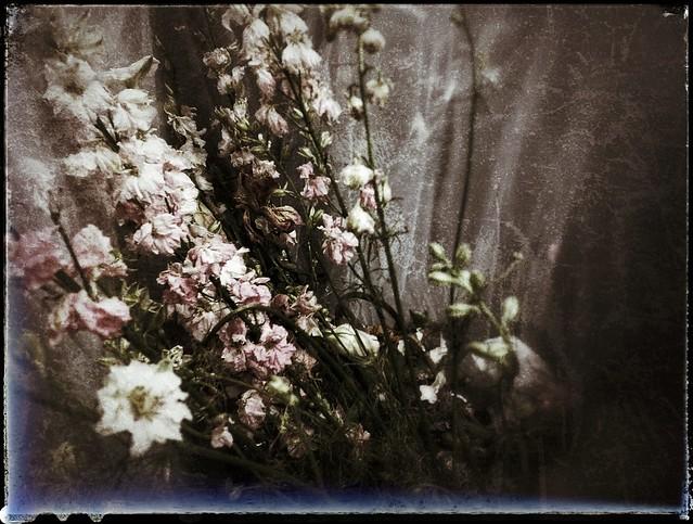 Bouquet of sorrow