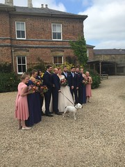 Adam and Charlotte Winson wedding at Shottle Hall - 3-10-2015