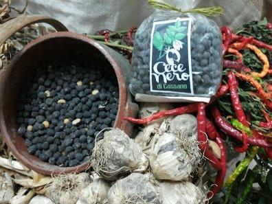 cece nero Cassano delle Murge