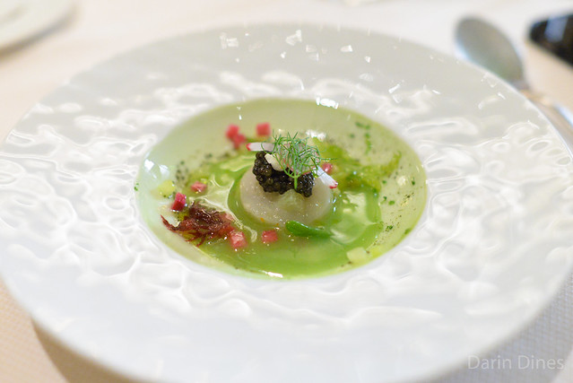 SAINT JACQUES Sea Scallops Ceviche, Persian Cucumber, Radishes, Sea Lettuce, Finger Lime, White Sturgeon Caviar