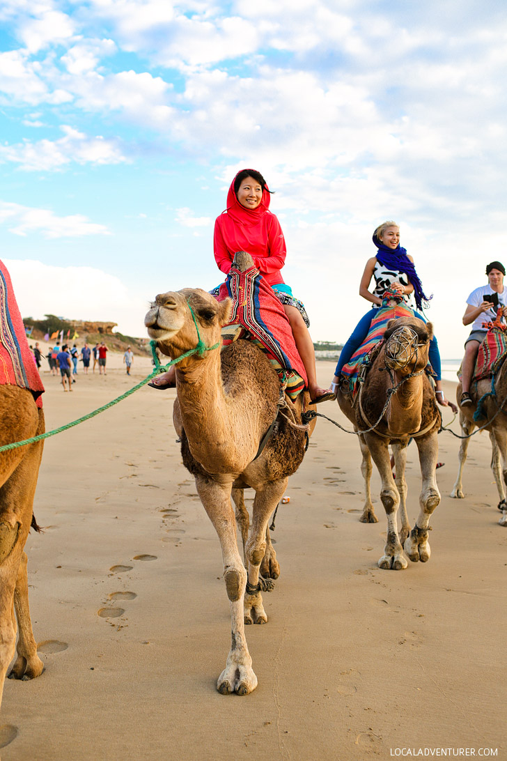 Riding Camels (21 Fascinating Things to Do in Marrakech Morocco).