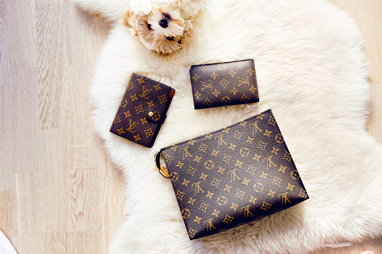 Do you own some small LV things yourself e2ede95ca0