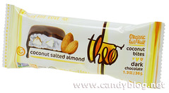 Theo Coconut Salted Almond Bites