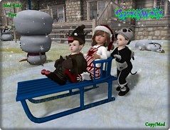 *S*W* Sled Ride