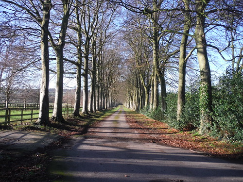 Approach Lane to Boswells Farm, Wendover