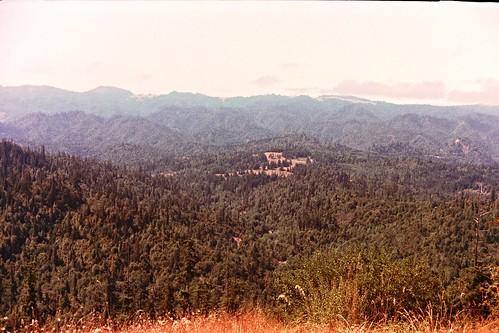 Kerrydale Ranch-7