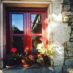 Good afternoon! Bon après-midi de #lagrossetalle #paysmellois #deuxsevres #LaTalle #appartement #cottage
