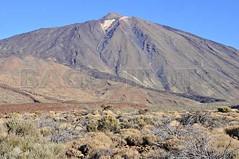 Teide vulkan070