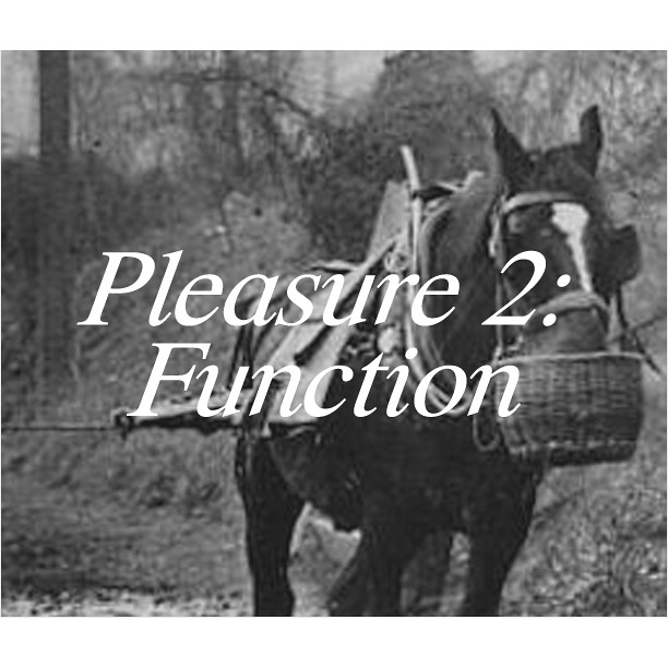 Pleasure2