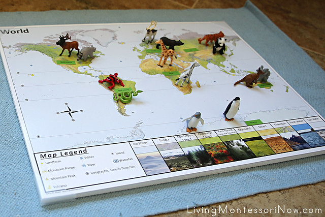 World Map with Animal Figures