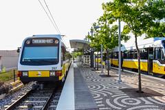 Dallas Area Rapid Transit (DART)