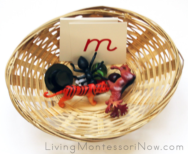 S, M, T, A Beginning Sounds Basket