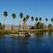 Desert Studies Center - Soda Springs Ca. by docentjoyce