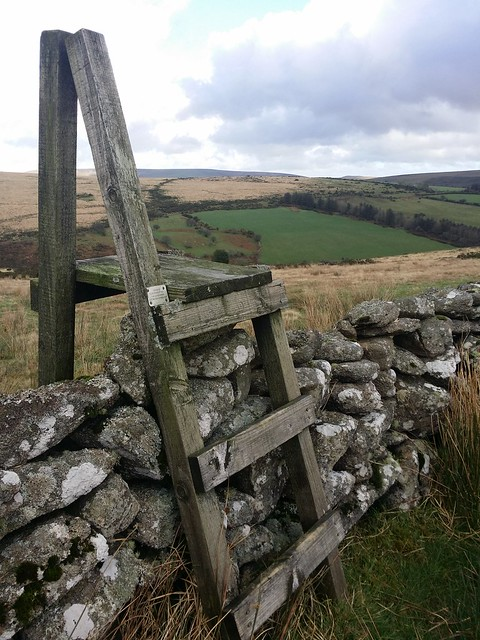 Ladder Stile to Blacka Tor (East Dart)