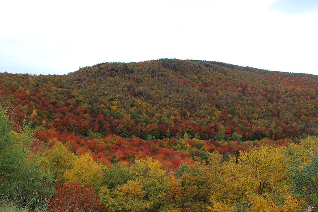 Fall Landscape in Vermont