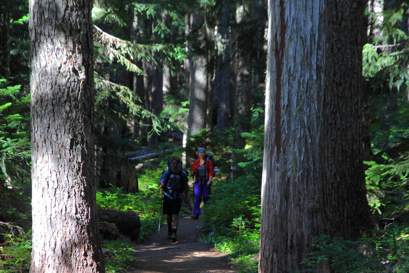 IMG_9492 Glacier Basin Trail